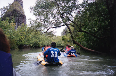 215. cu caiacul printre mangrove.jpg