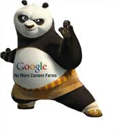 Comprendiendo Google Panda para tener un mejor rankeo