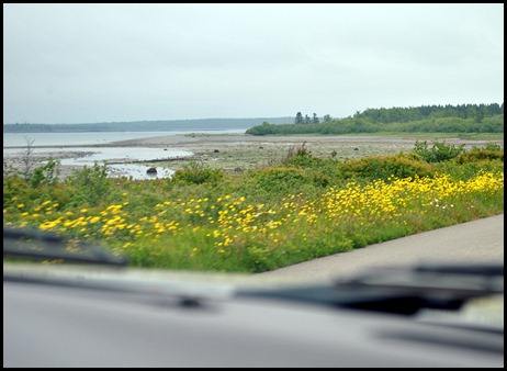 13 - Drive to Quoddy Head State Park