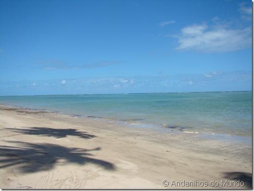Praia do Patacho Sombras na Areia Coqueiros Alagoas Brasil