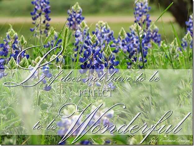Bluebonnets_LifeWonderful