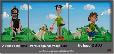 Campaña recoge lo que hace tu perro
