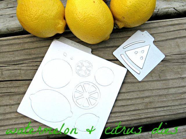watermelon & citrus dies