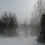 2012-02-06 (1).jpg