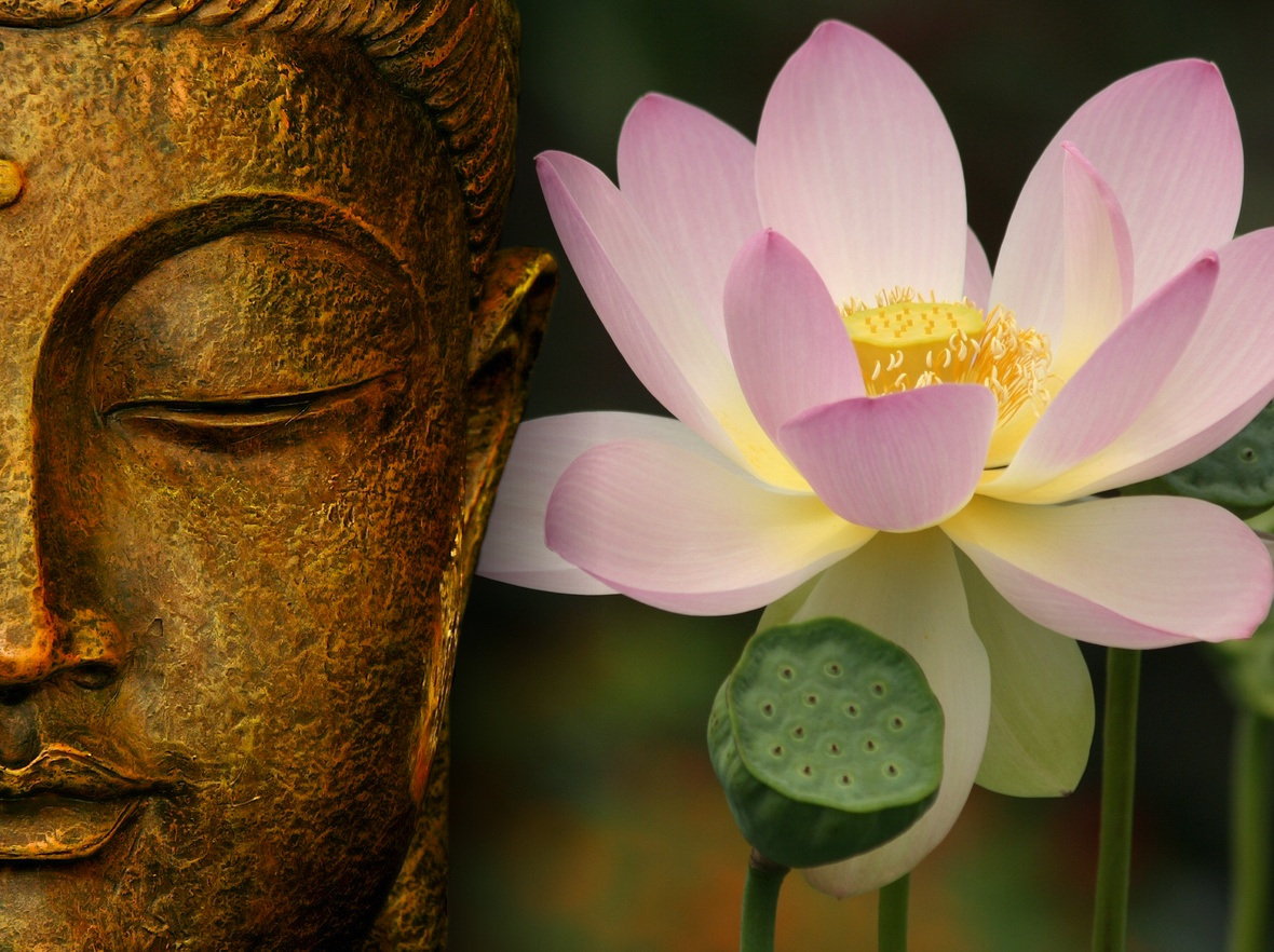 Buddha Quotes On Family Quotes Links