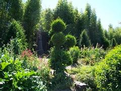 2011.07.01-006 jardin de rocaille