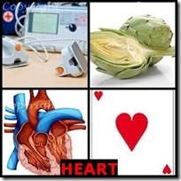 HEART- 4 Pics 1 Word Answers 3 Letters