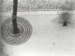 Otto Steinert - Pé de peão - 1950