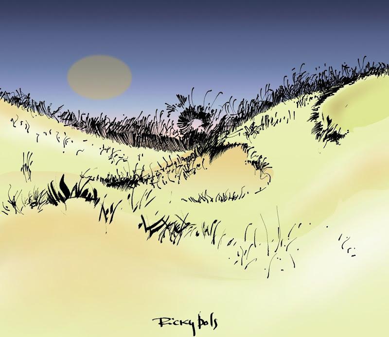 praiarabiscada