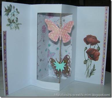 m_carte papillon 002