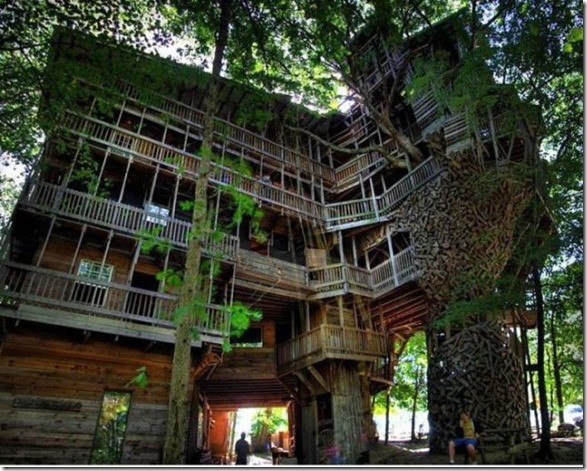 awesome-treehouses-5