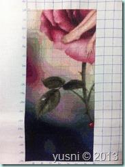 rose-02.07-03