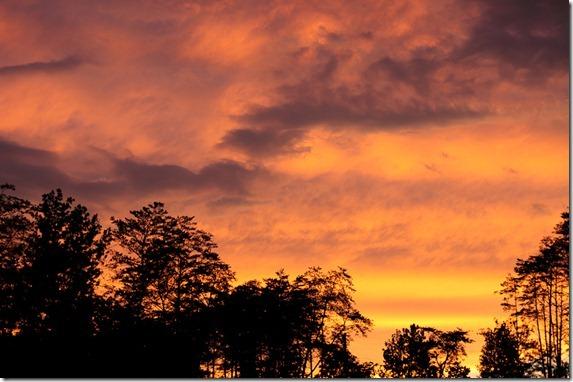 PNP sunset621-1-2