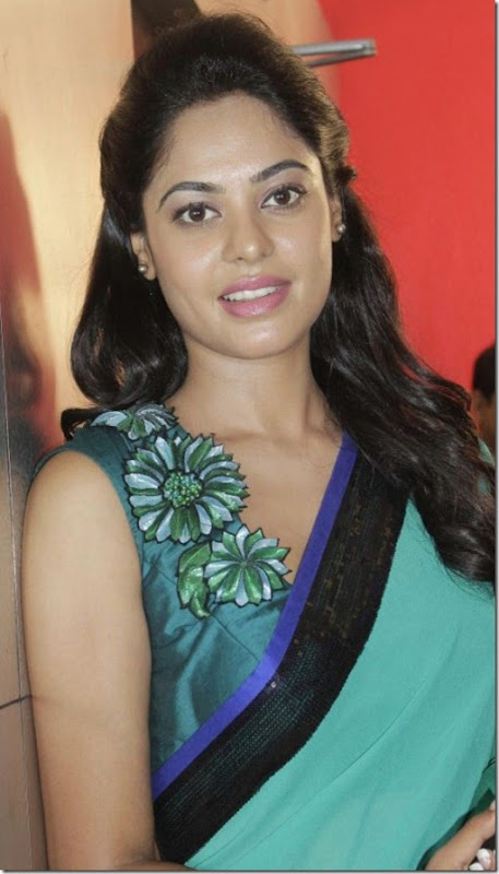 Actress Bindu Madhavi at Desingu Raja Movie Team Interview Photos