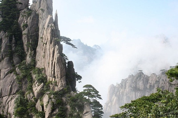 A forest in the clouds in Huangshan, China 01