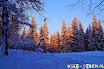 Каникулы - Зимние каникулы - 2014 - Самые счастливые рождественские каникулы