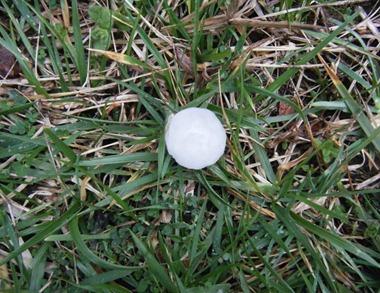 hail_6