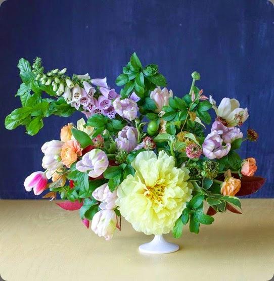 foxglove tulipina10168127_787037257974775_1801105999704482042_n