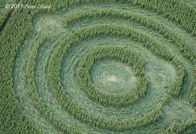 Cercuri in lanuri 6
