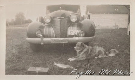 Car and a dog and fish Brainerd Antiques