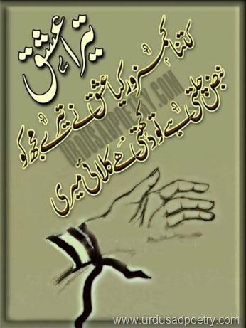 Tera Ishq Shayari