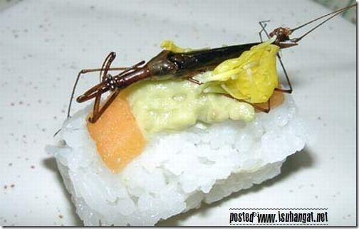 sushi eksotik