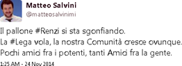 Salvini regionali copia