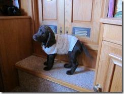 sweater! 002 (1024x768)