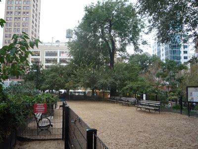 NY 2010 (13)