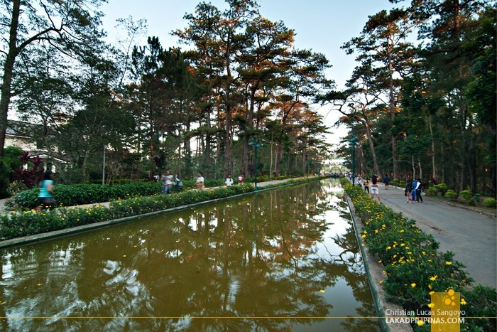 The Pool of Pines at Baguio City's Wright Park