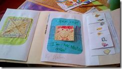 lapbook (3)