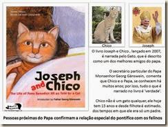 papa_ama_gatos (8)[7]