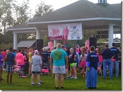 Making Strides Against Breast Cancer 1
