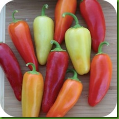 Pepper Dancing Spirits