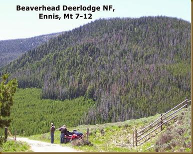Beaverhead Deerlodge NF, Ennis, Mt 7-12
