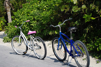 Biking is a fun thing to do on the island.  You can explore down the paved paths.