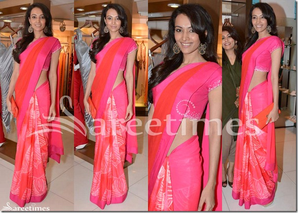 Dipannita_Sharma_Pink_Saree