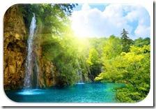 imagen-dia-del-medio-ambiente (8)