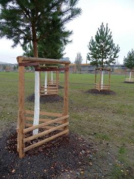047 Tysk trädplantering i en park i närheten av Gleisdreieck