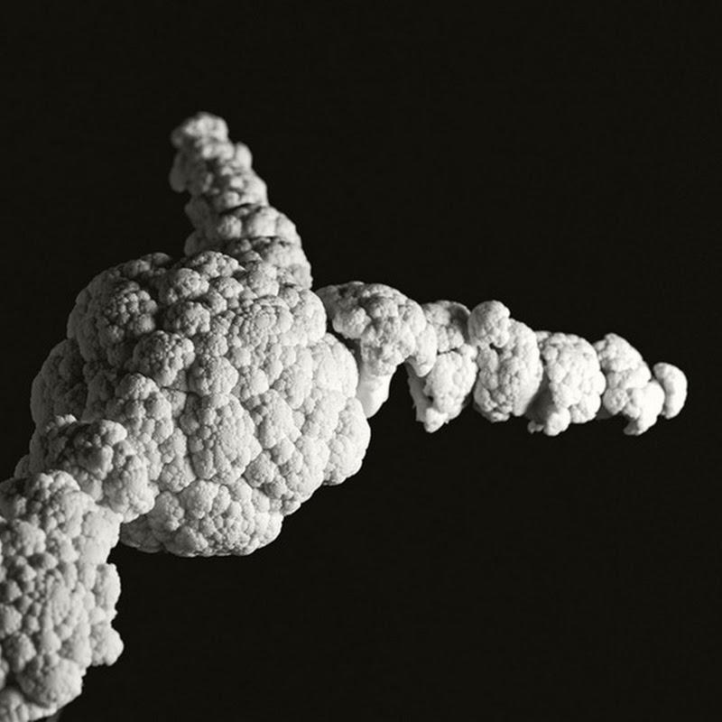 Cauliflower Explosions by Brock Davis