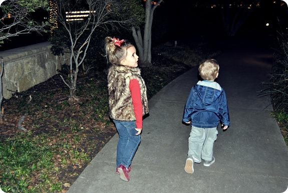 Plano Christmas Tree Lighting 2012 058