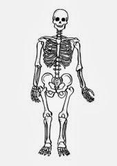 skeleton-9490