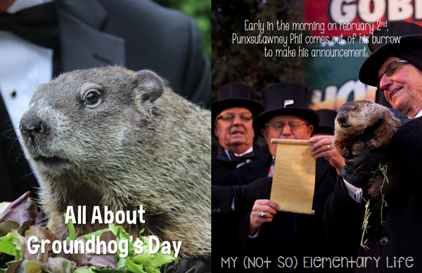 all about groundhogs day big book