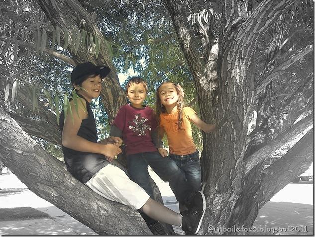 IMG_20111014_150247-1