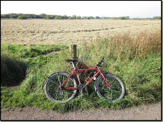 On the Trans Pennine Trail at Carrington Moss