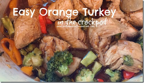 easy orange turkey