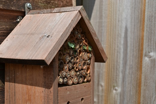 Insect house made from bamboo for bees