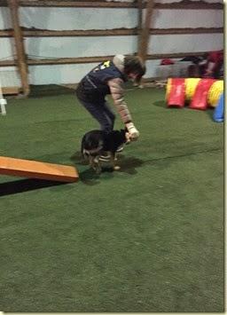 150310 Liisa agility 5