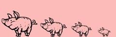 4 Pigs