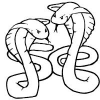 001856_Cobras.jpg